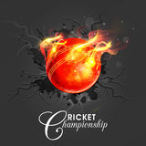 Glossy Ball in fire for Cricket Championship concept. Glossy Red Ball in fire on stylish background for Cricket Championship concept Stock Photos