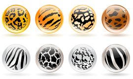 Glossy balls. Set of different glossy balls with wild animals skin patterns Stock Photography