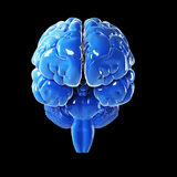 Glossy blue brain Royalty Free Stock Image