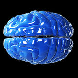 Glossy blue brain Royalty Free Stock Photos
