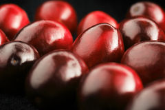 Glossy cranberries Stock Photo
