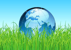 Glossy Earth Map Globe. Vector illustration of blue Glossy Earth Map Globe on the green grass Stock Image