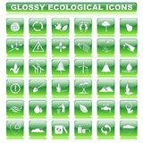 Glossy Ecological Button Stock Photos