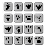 Glossy Foot Print Icons. A selection of glossy graphics representing different types of foot prints vector illustration