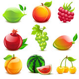 Glossy fruit set Stock Photography