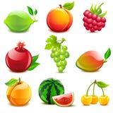 Glossy fruit set. Set of 9 glossy fruit icons Stock Photography