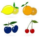 Glossy fruit set Royalty Free Stock Photos