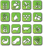 Glossy Green Farming Crop Icons Royalty Free Stock Images