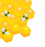 Glossy honeycombs with bees Royalty Free Stock Photo