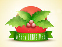 Glossy mistletoe with ribbon for Christmas. Stock Images