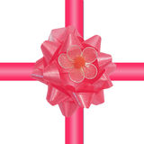 Glossy pink gift ribbon Stock Photography