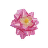 Glossy pink gift ribbon Stock Images