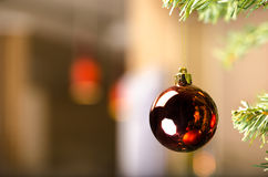 Glossy Red ball ornament on Christmas tree Royalty Free Stock Photos