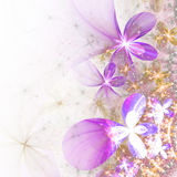 Glossy and shiny fractal flowers Stock Photo