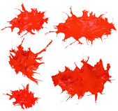 Glossy Shiny Red  Paint Splashing. Glossy Red  Splatter Paint Splash Stock Images