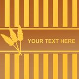 glossy wheat frame Royalty Free Stock Image