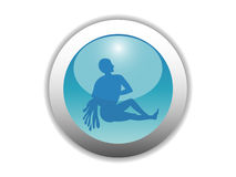 Glossy Zodiac Button Icon Royalty Free Stock Images