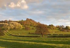 gloucestershire krajobraz Fotografia Royalty Free