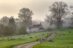 Gloucestershire morning. A misty Cotswold spring morning, Saintbury near Chipping Campden, Gloucestershire, England Stock Photo