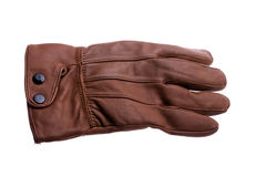 Glove. Isolated glove Stock Image