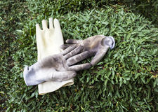 Glove for gardening Royalty Free Stock Photography