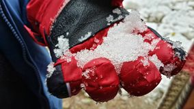 Glove. Snow , glove , cold , ice , freeze Stock Images