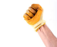 Gloved hand. Fist (part of a set royalty free stock photo