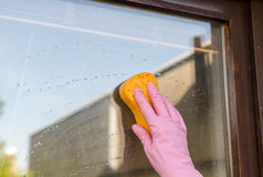 Gloved hand cleaning window Stock Photos