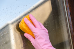 Gloved hand cleaning window Stock Photo