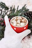 Gloved Hand Holding Hot Cocoa Stock Photos