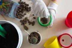 Gloved handen gegoten drainage in groene pot Stock Foto's