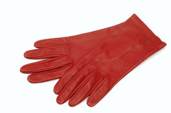 Free Gloves Stock Photography - 441592