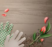Gloves and flower. Vector illustration of gardening gloves with flower on wooden table. Isolated, top view, background with copy space Stock Image