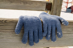 Gloves Hanging To Dry. A pair of blue gloves hanging in the sun to dry Stock Images