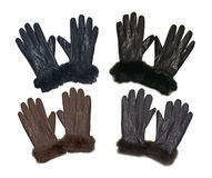 Gloves Stock Photography