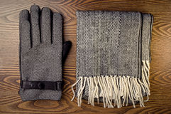 Gloves and scarf Stock Image