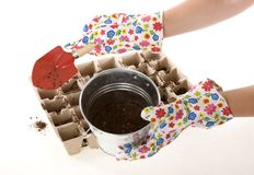 Gloves, Shovel Placing Soil into Compost Pots. Gardener wearing colorful flower patterned  gardening gloves is using a red shovel to place soil from a silver Royalty Free Stock Image