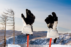 Gloves and ski sticks Stock Images