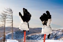 Gloves and ski sticks Stock Images