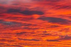 Glow of dawn Stock Photos