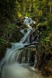 Glow at the Top. Slow motion waterfall running over moss in the Wasatch national forest in Utah USA Royalty Free Stock Photography