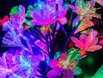 Glowing abstract flowers on a dark background. Glowing abstract multicolored flowers on a dark background Stock Image