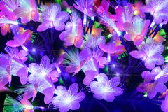Glowing abstract flowers on a dark background. Glowing abstract multicolored flowers on a dark background Royalty Free Stock Photo
