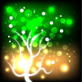 Glowing Autumn Tree Royalty Free Stock Images
