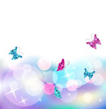 Glowing  background with butterfly. Stars and transparent rounds Royalty Free Stock Photography