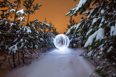Glowing ball in a pine forest. Glowing ball on the background of a winter pine forest Stock Photos