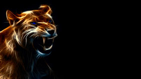 Glowing yellow lion. Picture of a Glowing angry yellow lion with blue eyes and on a black background Royalty Free Stock Photo