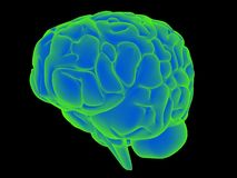 Glowing brain Stock Photography