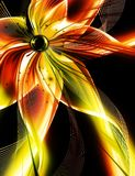 Glowing bright flower Stock Image