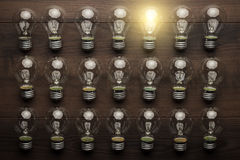 Free Glowing Bulb Uniqueness Concept Royalty Free Stock Photo - 46063065